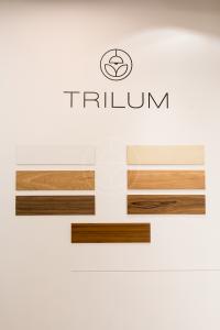 Trilum svietidlá - výber z drevených dýh dub, palisander, orech, čerešňa na Nábytok a bývanie 2016